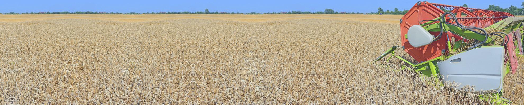 Pojištění zemědělských rizik - hospodářských plodin a zvířat